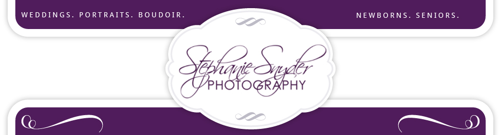 Stephanie Snyder Photography Blog logo